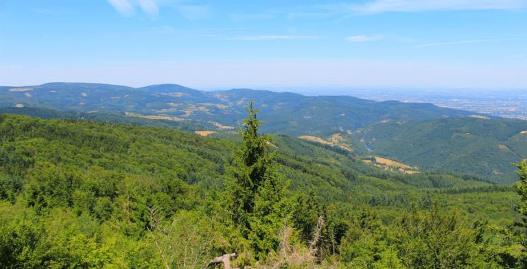 vue des monts de la madeleine - 42-Loire